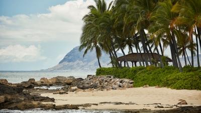 Oahu Resort Hosts Ultimate Destination Weddings At Four Seasons