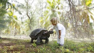 Tortoise Sanctuary at Four Seasons Resort in Seychelles
